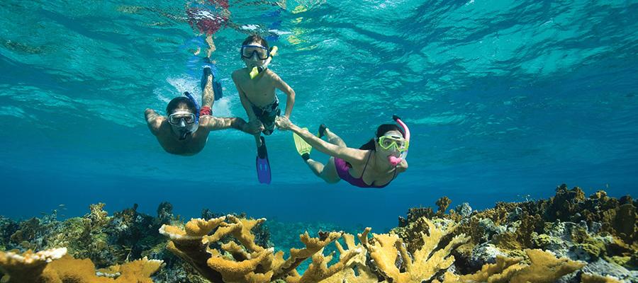 Bahamas Last Moment Vacations - Cruises from florida to bahamas