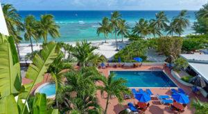 swimming pool coconut